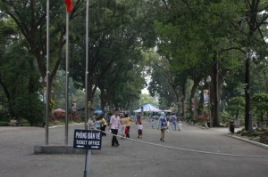 Some of the only trees in HCMC!