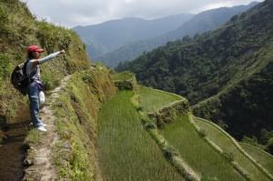 Our trail -  a bit narrow!