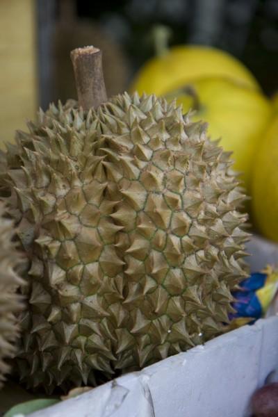 durian fruit in Vietnam