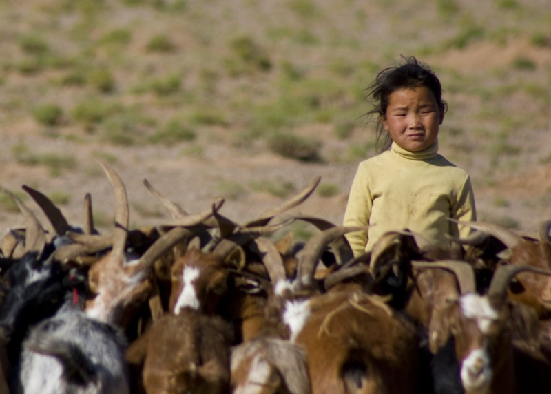 mongolia nomad children