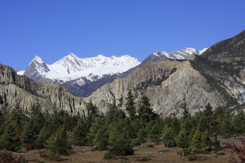 The Himalayas were beckoning me...