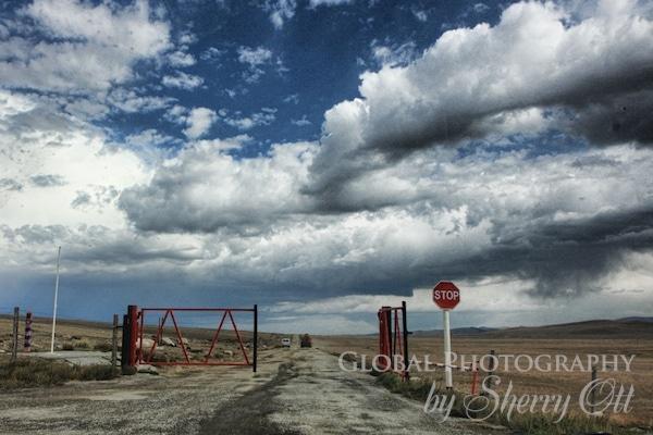 road to mongolia
