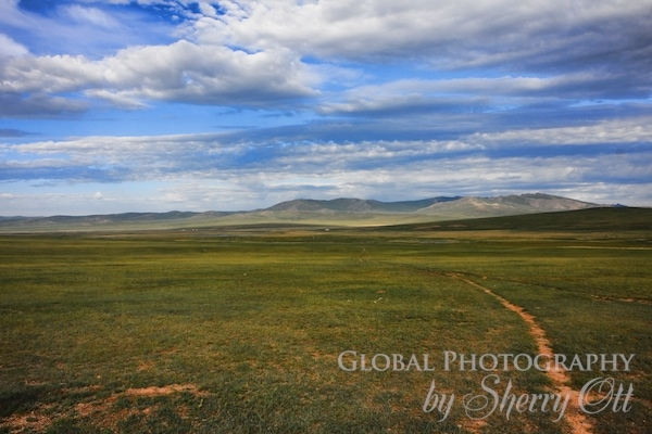 steppe Mongolia