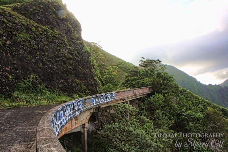 pali highway hike
