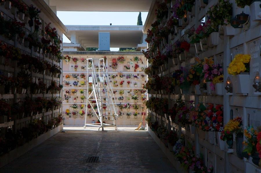 cemetery ladder