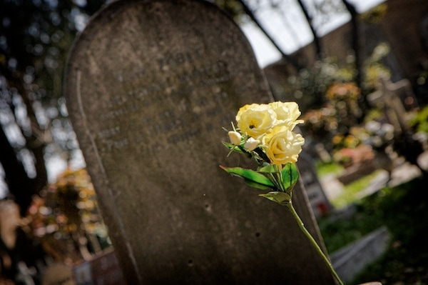 flower oon grave