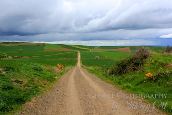 camino de santiago freqquently asked questions