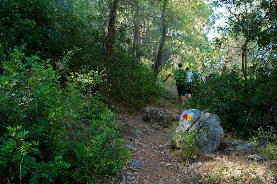 Trail markers lead the way