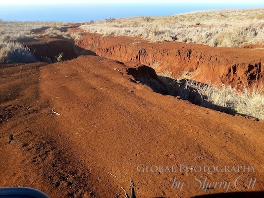 Red dirt of Lanai