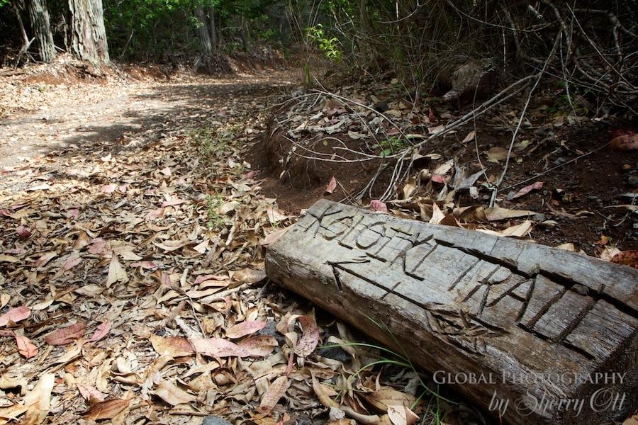 Trail head for Koloiki