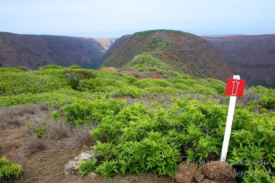 koloiki Ridge Trail marker