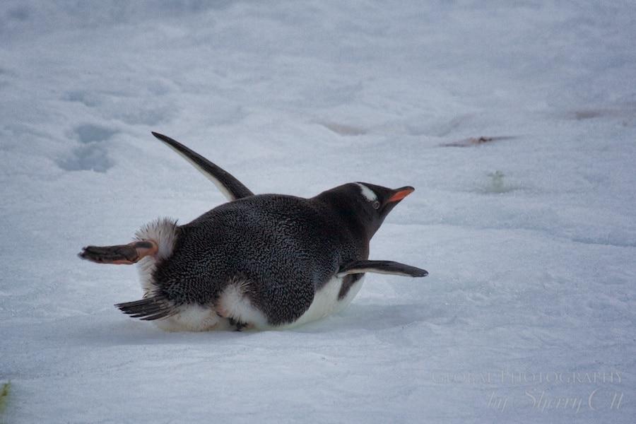 A good belly stretch