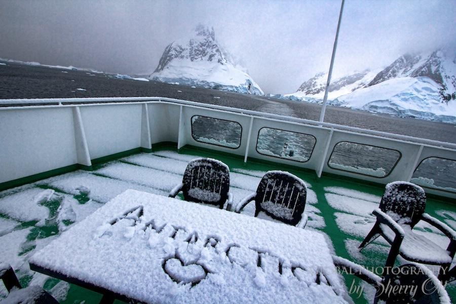 Loving Antarctica
