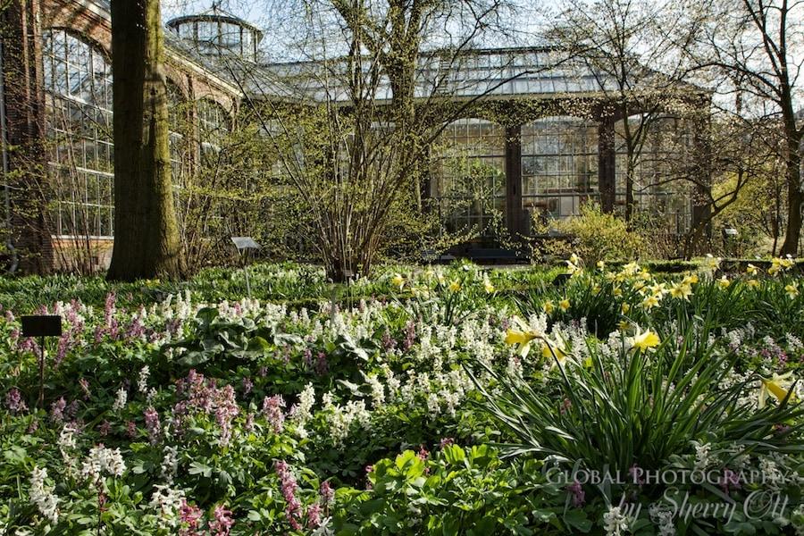 De Hortus Botanical Garden