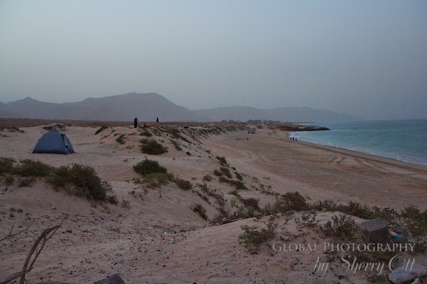 Beach camping oman