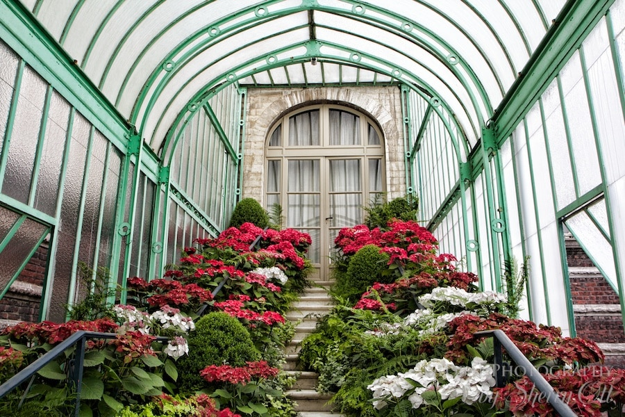 Belgium Royal Greenhouse