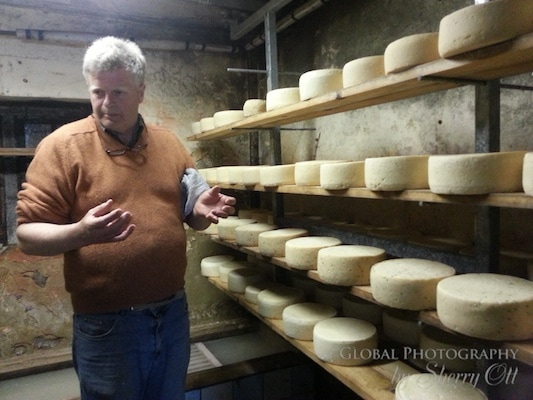 Cheese Rounds