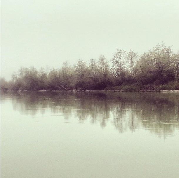 Golden wetlands adventure