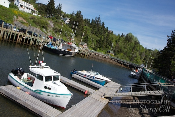 Hall's Harbor nova scotia