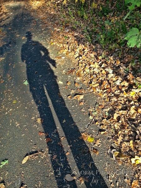 long fall shadow
