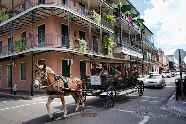 48 hours iin New Orleans