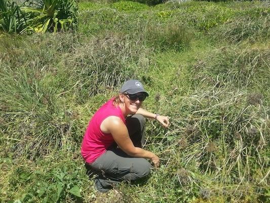 Volunteering in Maui Hawaii
