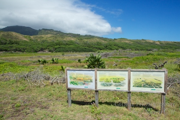 Waihee Coastal Dunes and Wetland Refuge maui