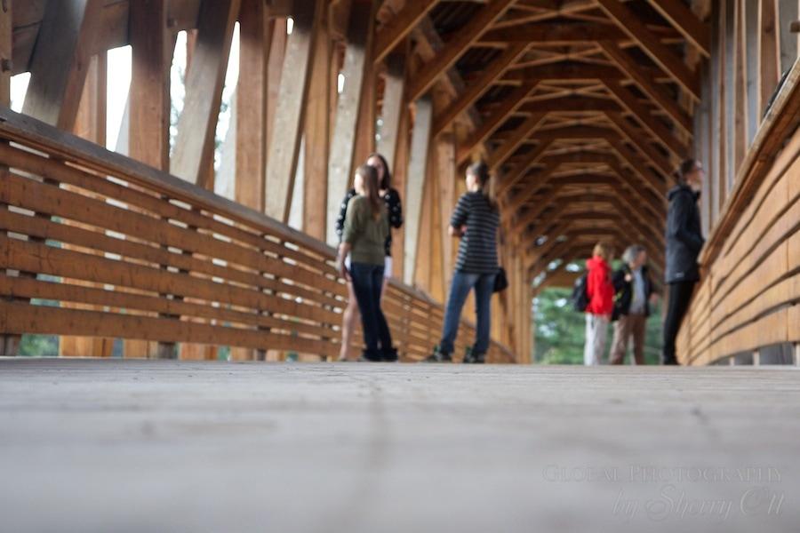 timber bridge golden BC