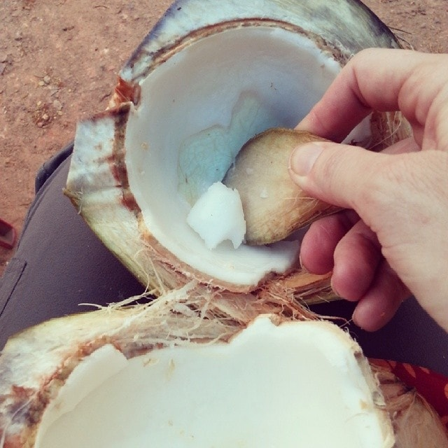 Coconut snack/break on the side of the road in India