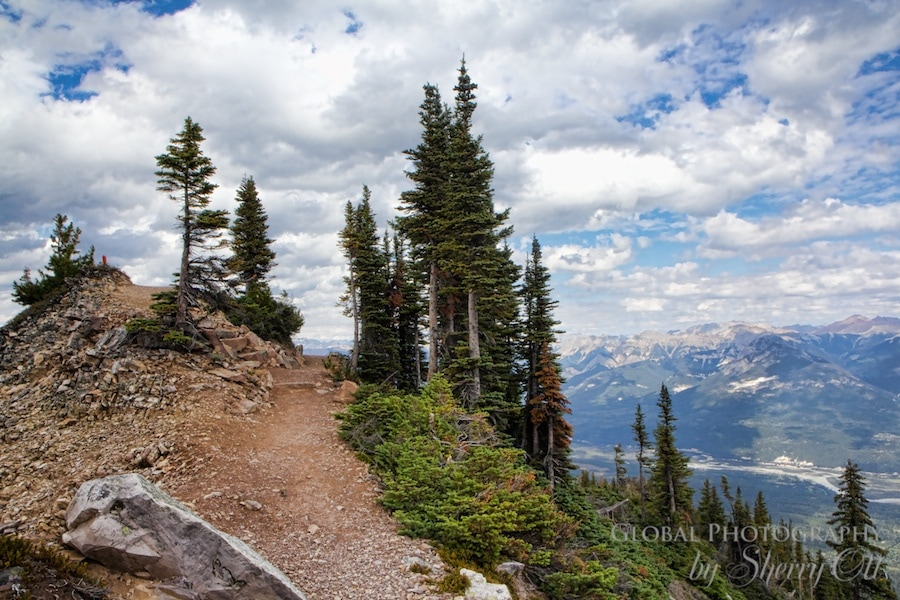 Hiking Kicking Horse Mountain