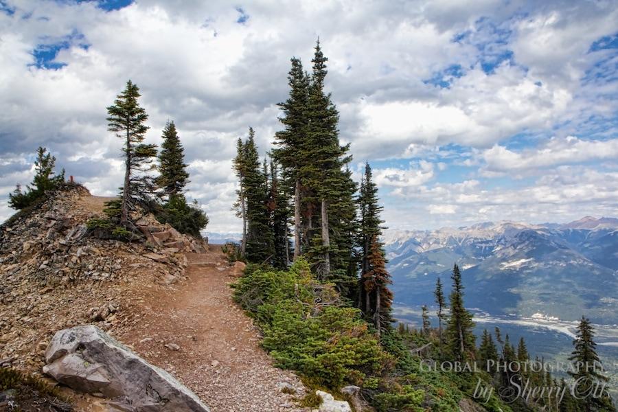 Hiking Kicking Horse Mountain Golden BC