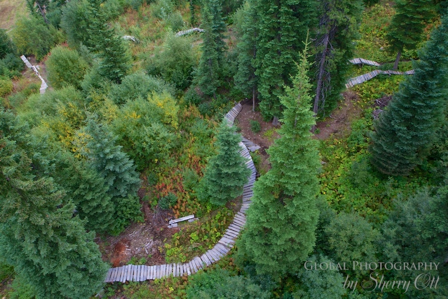 things to do in golden bc mountain bike trails