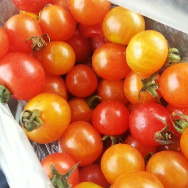 cherry tomatoes from a roadside market in India on the Rickshaw Run
