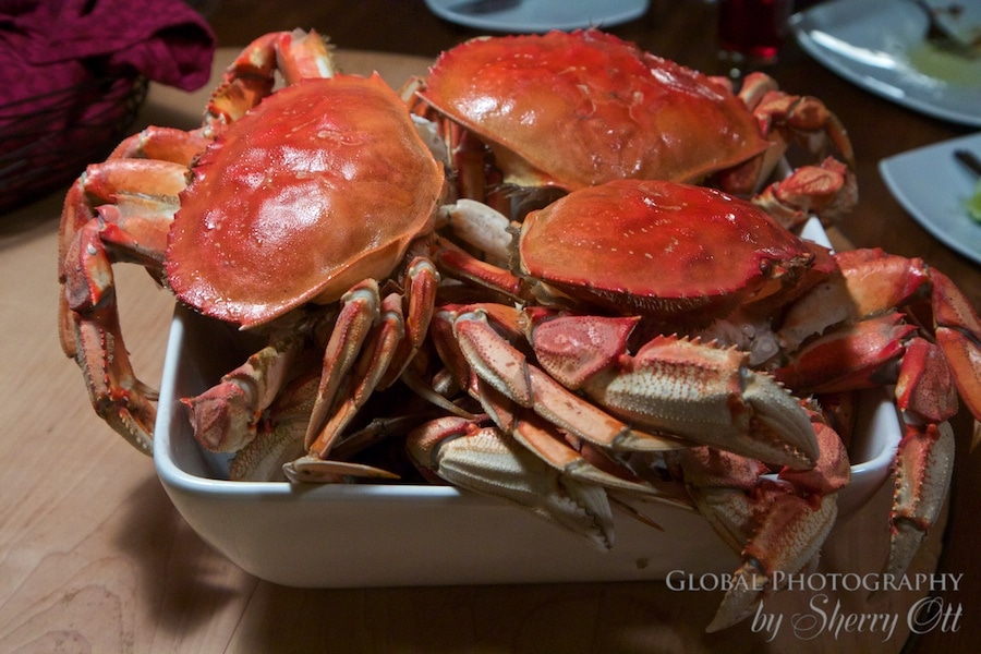 All you can eat crab night