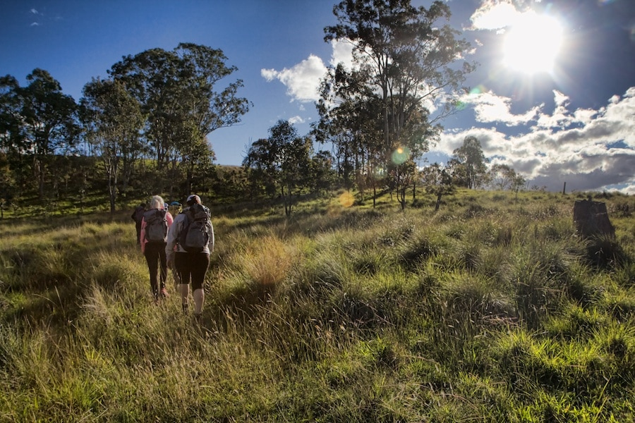 Spicers Scenic Rim Trail