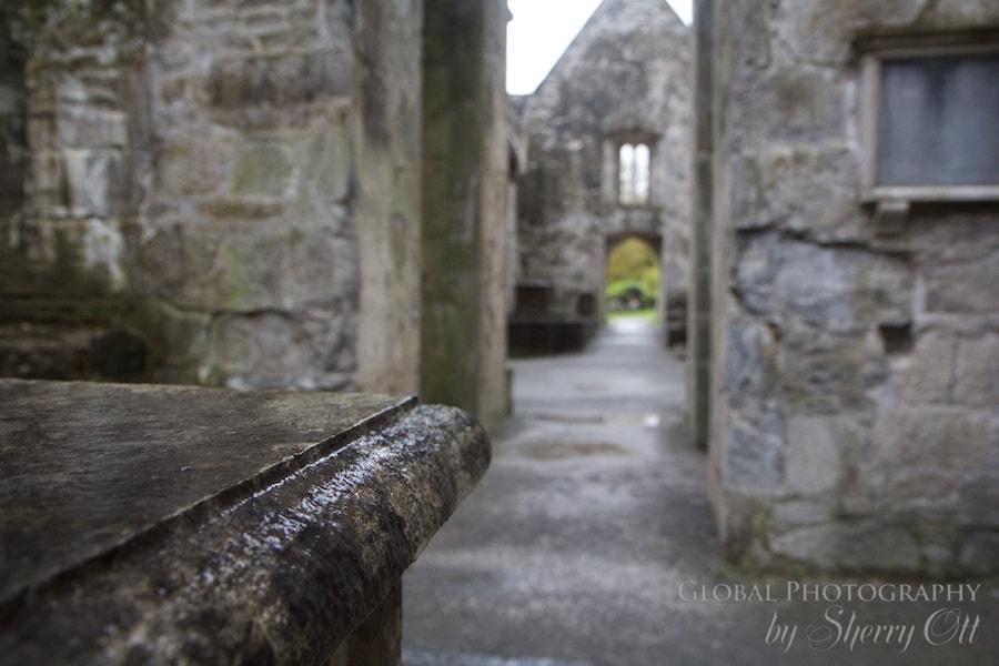rainy day things to do Ireland muckross abbey