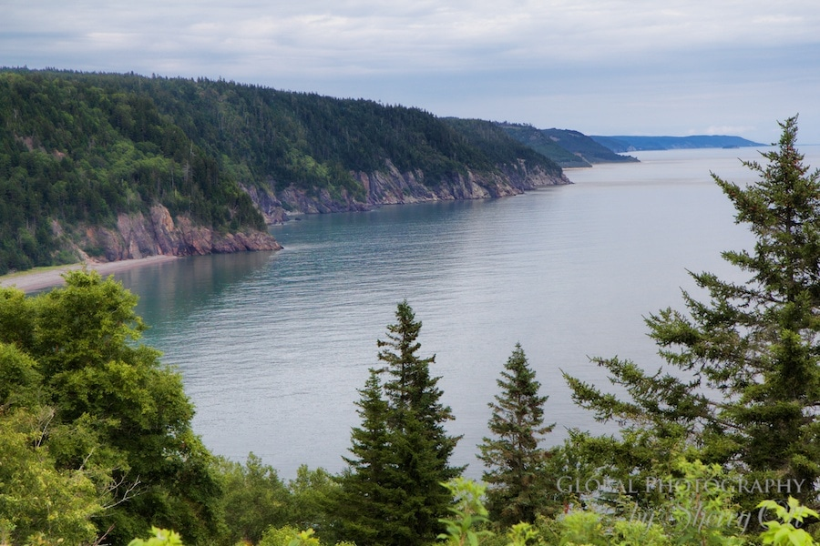 Bay of Fundy Activities