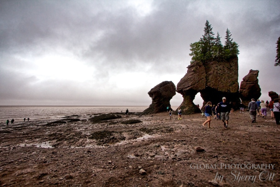 Bay of Fundy Hopewell Rocks