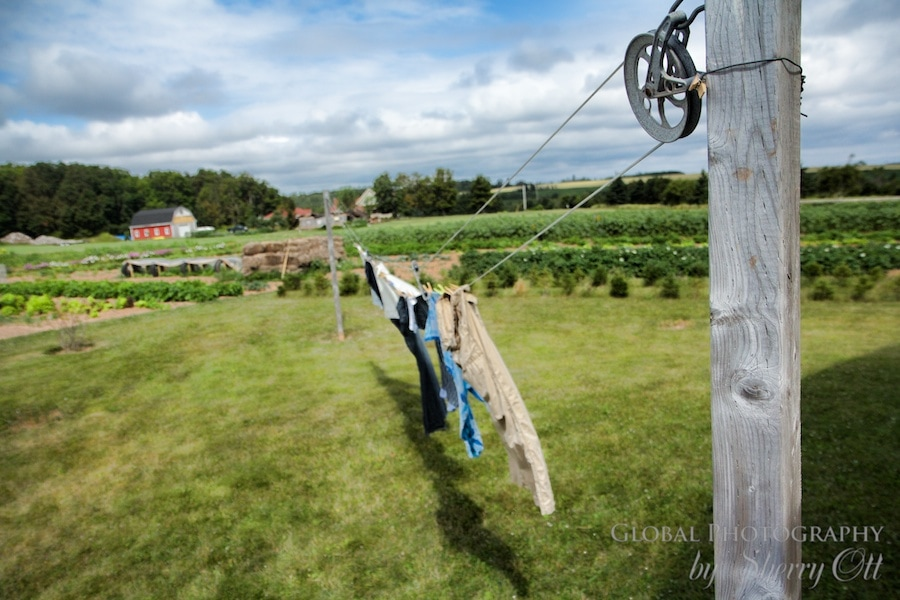 laundry drying at the farm