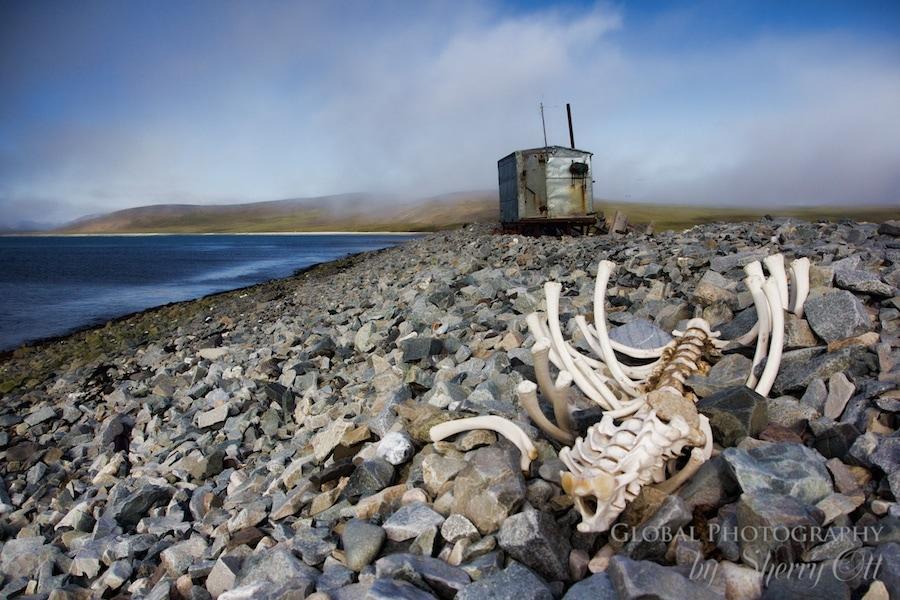 Russian Far East Chukotka