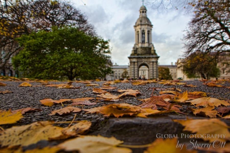 Dublin ireland Fall leaves