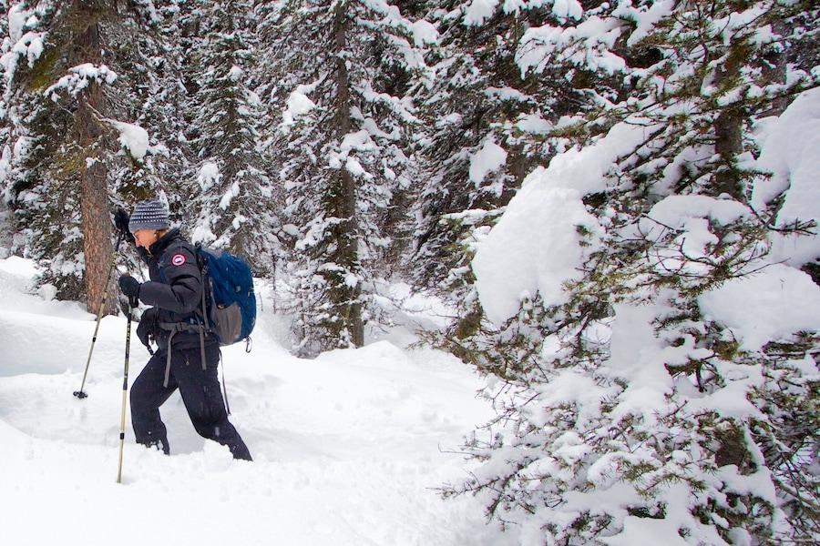 Snowshoeing around Banff in freshly fallen snow!