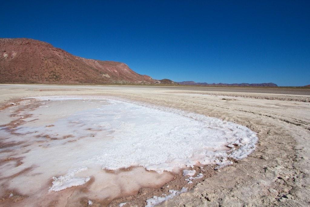 sea of cortez salt flat