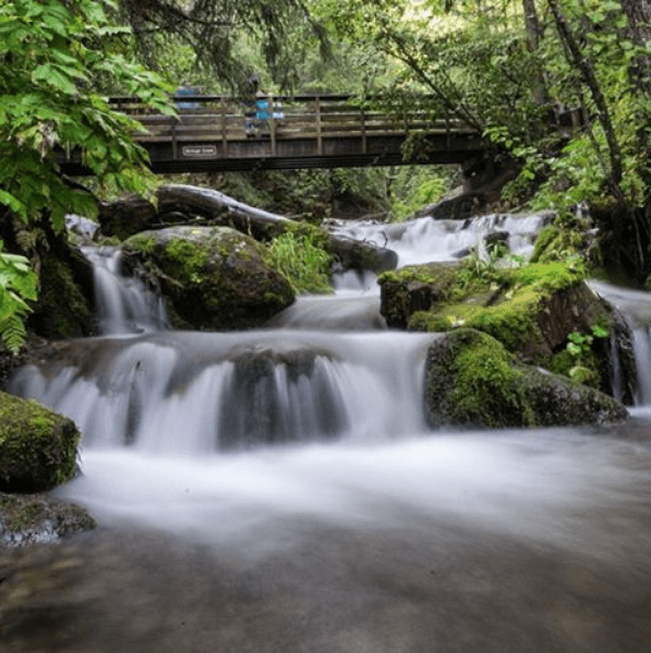 Alaska Wilderness waterfall