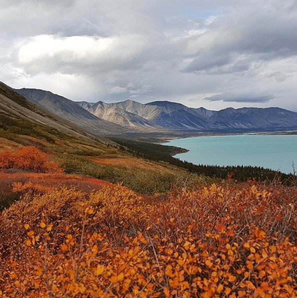 Alaska Wilderness lake clark nps
