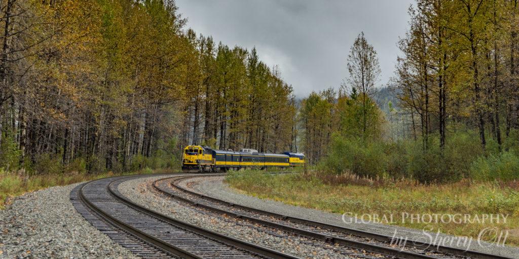 Alaska Train fall colors