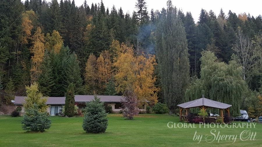 Ecotours BC Lodge