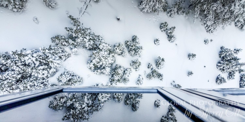 why ride banff gondola