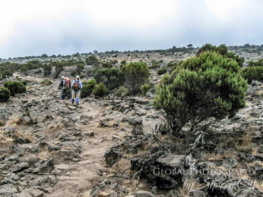 HIking Kilimanjaro