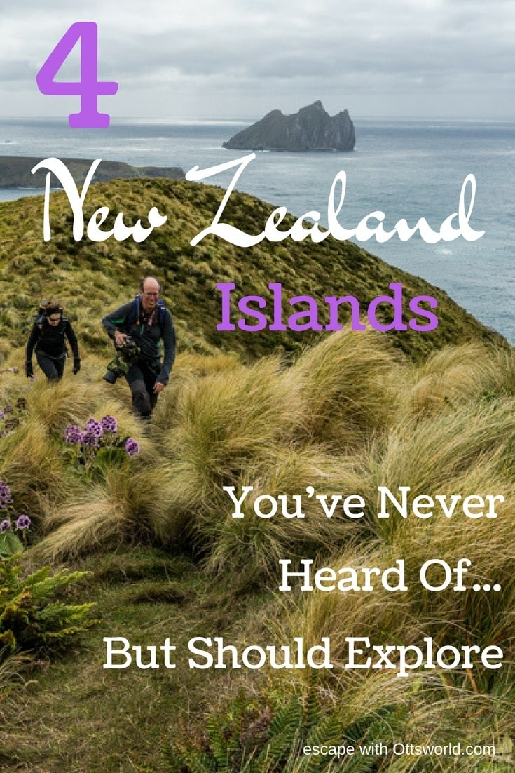 4 New Zealand Islands You've Never Heard Of But Should Explore If you want the complete Kiwi experience, then don't leave out these 4 New Zealand Islands